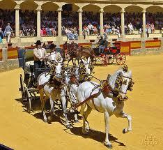 Pferdekutschen in der Arena während des Festes
