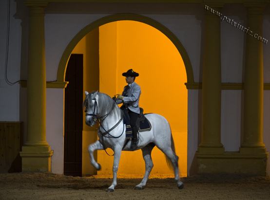 Spanische Hofreitschule in Jerez