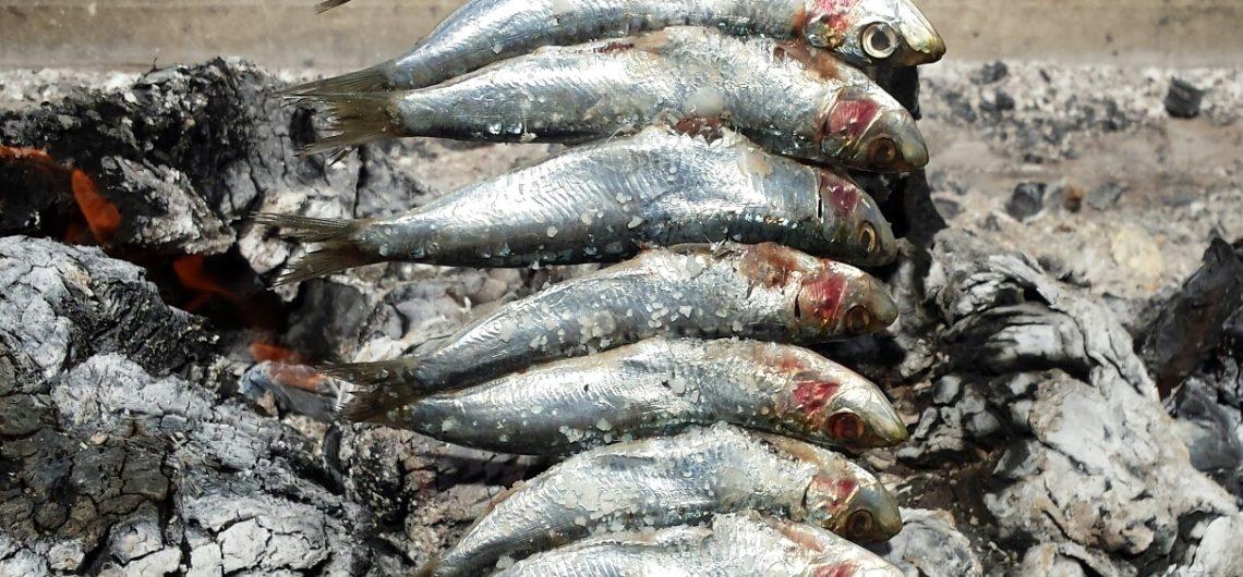 """Sardinen in Andalusien: """"Espeto de sardinas"""""""