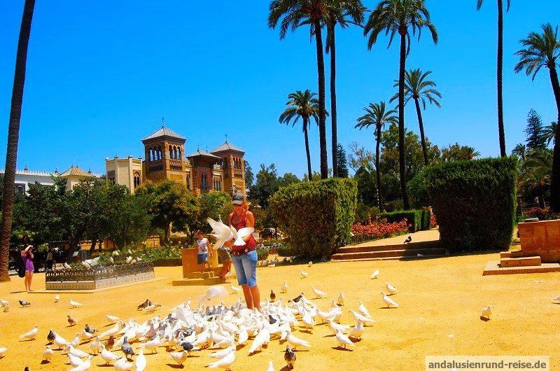 Was tun, wenn Sie Sevilla besuchen