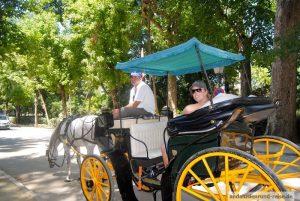Die Stadt mit einer Pferde-Kutschfahrt kennen lernen, Sevilla