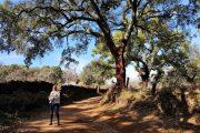Wander_Urlaub_in_Aracena_Andalusien